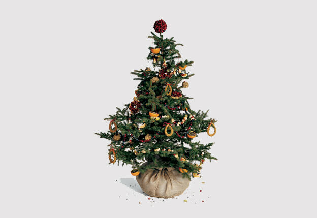 What\'s Greener: A Real Christmas Tree or Long-lived Plastic? | Audubon
