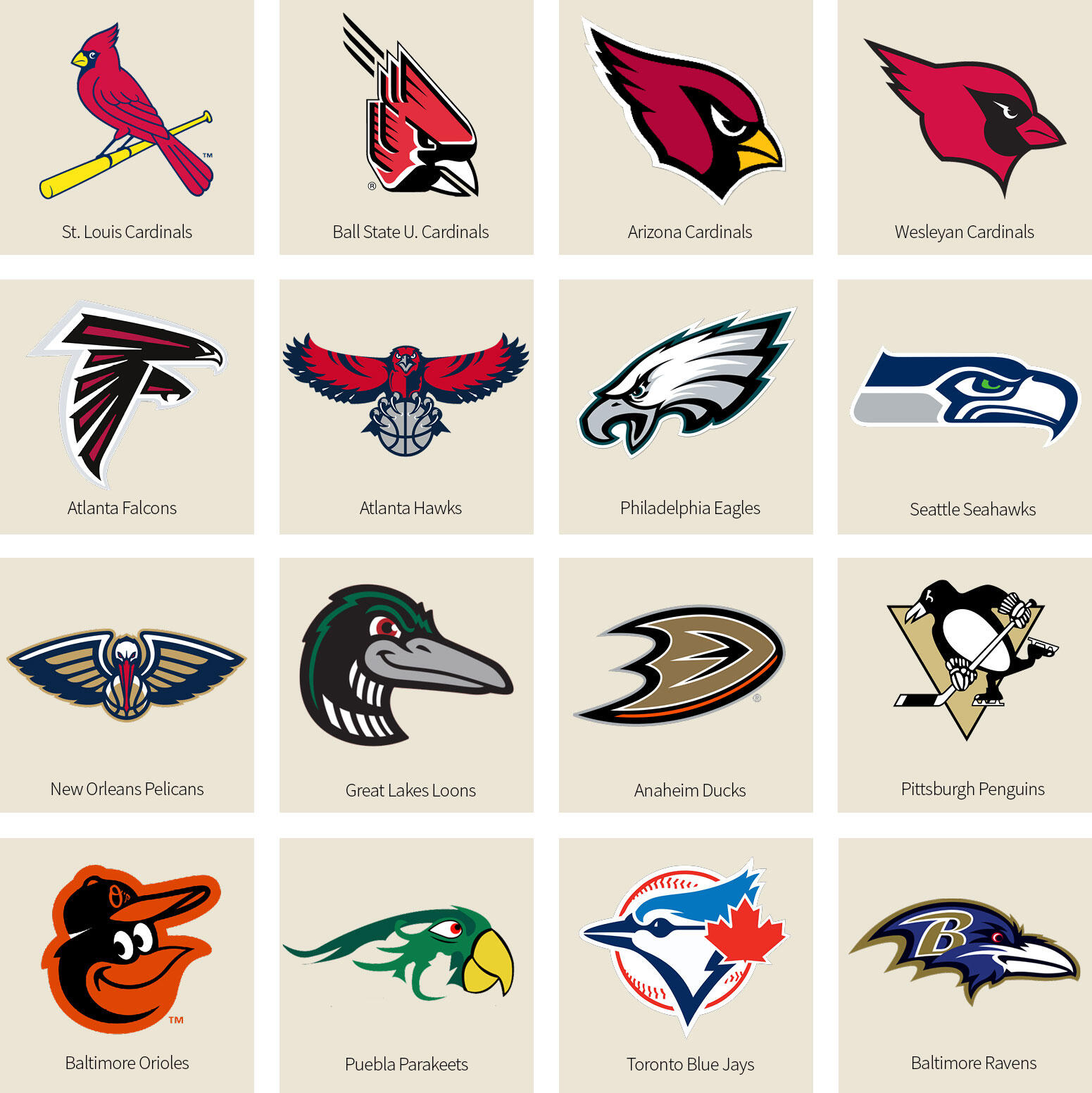 Avian Athletes Who Start Their >> Bracket What S The Best Bird Named Sports Team We Have A Winner