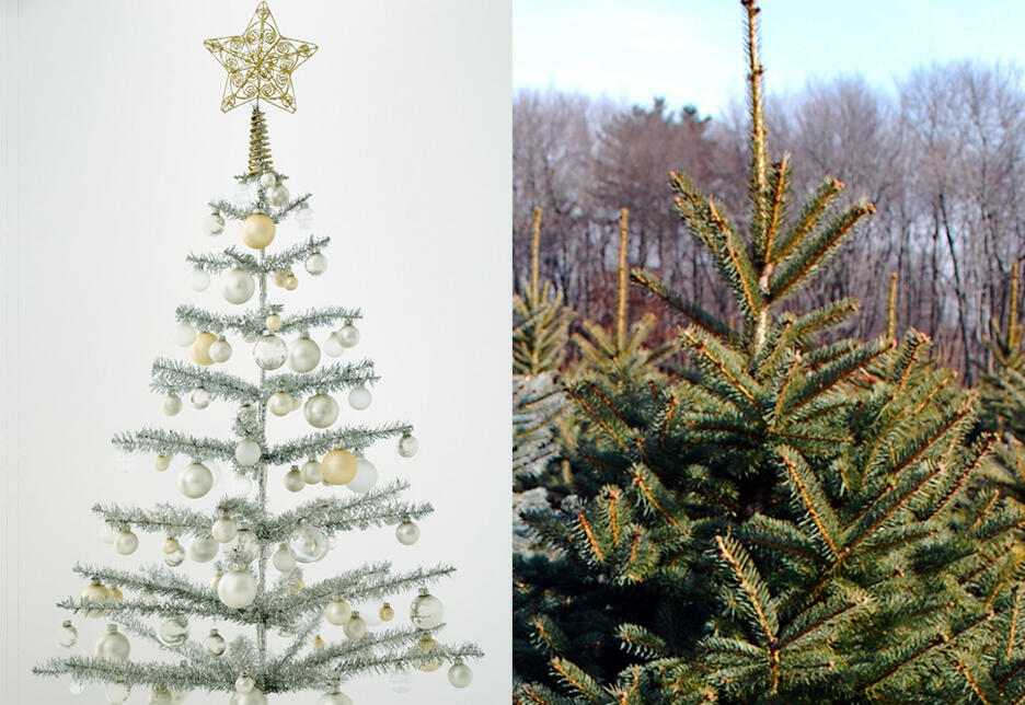 Fake Christmas Tree.Should You Buy A Real Or Fake Christmas Tree Audubon