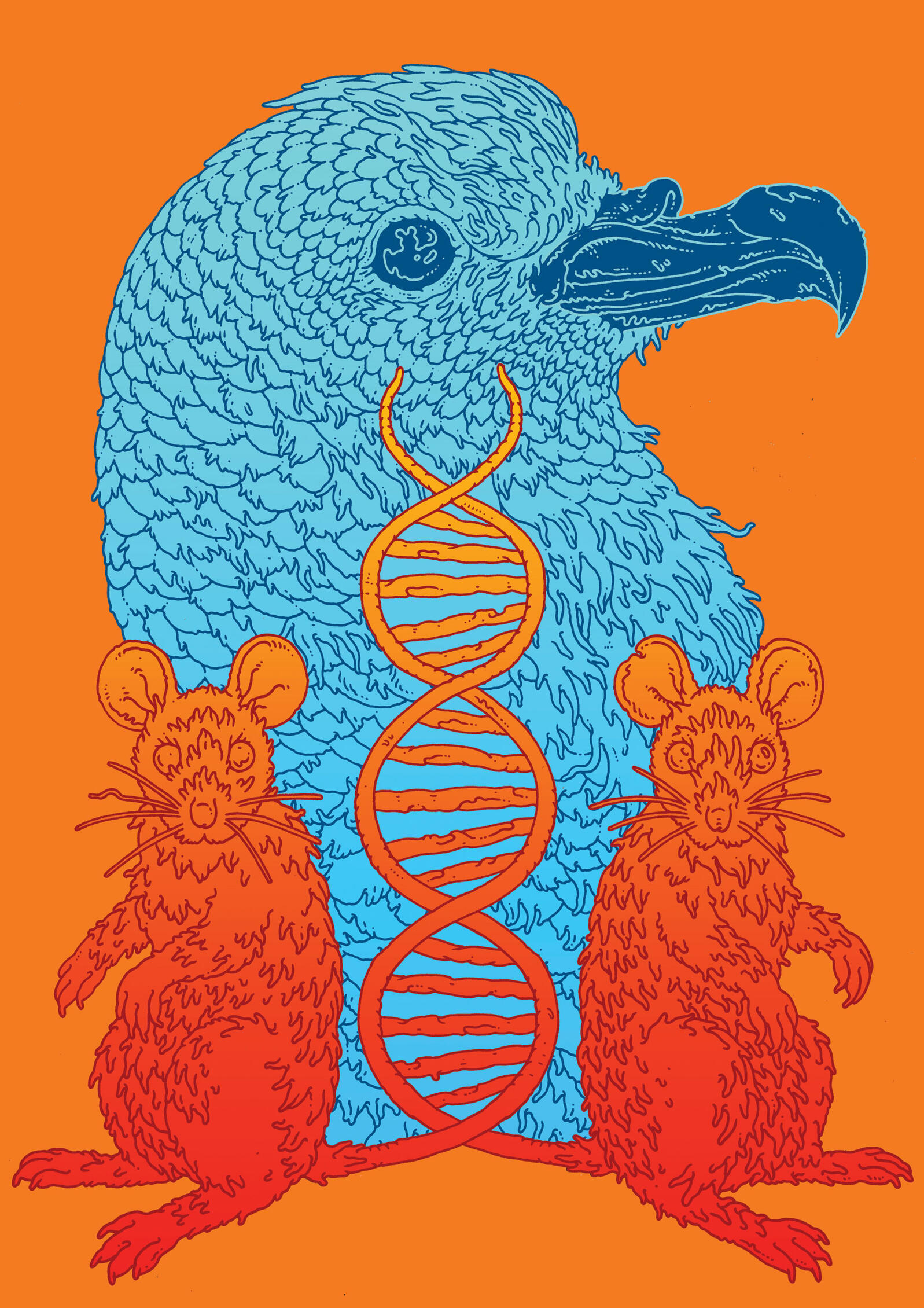 How Two Amateur Scientists Created The First Genetically Engineered Animal A Brand New Bird