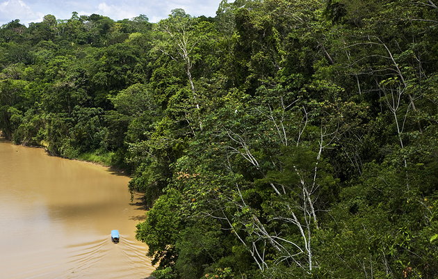 A Father-Son Adventure in Peru's Amazon