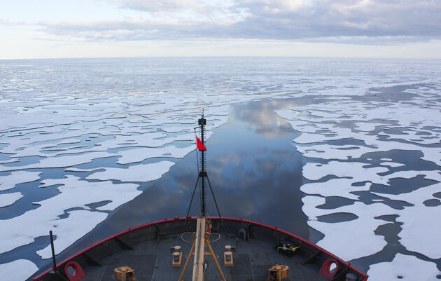 The Arctic Ocean: A Future in Peril