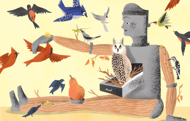 If I Were a Robot, Here's All the Awesome Birding Features I'd Have