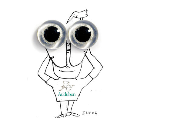 The Audubon Guide to Binoculars