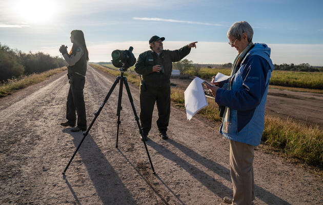 The Key to the Christmas Bird Count's 120 Years of Success? The People.