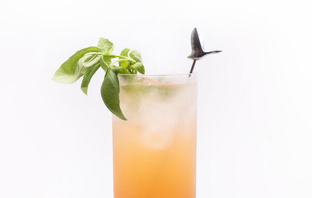 Cool Off With a Bird-Inspired Cocktail