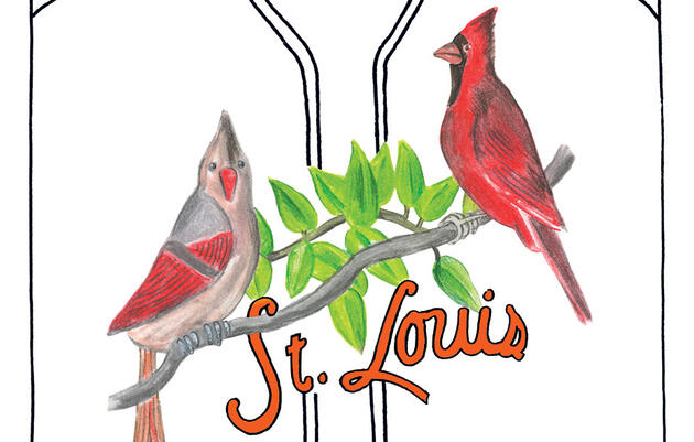 Reimagining the Northern Cardinal