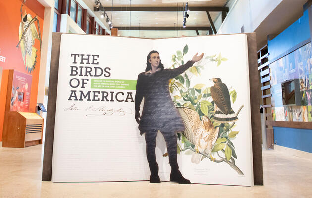 John James Audubon Center Opens at Historic Mill Grove