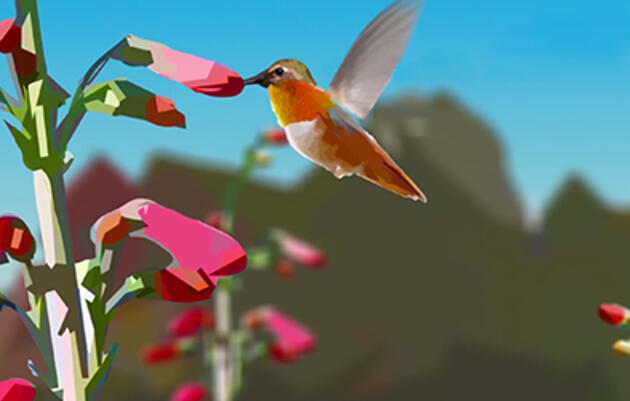 How Climate Change Threatens Hummingbirds