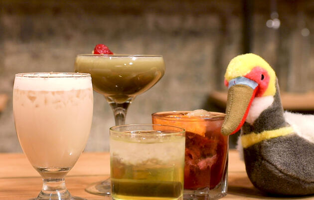 Birdy Cocktails for the Holiday Season