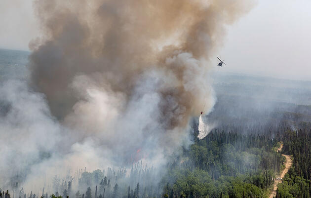 Alaska's Big Fire Seasons Are a 'New Normal' and Reshaping the Landscape
