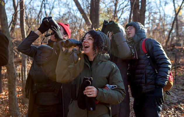 Everything You Need to Know to Do a Free (and Fun) Christmas Bird Count