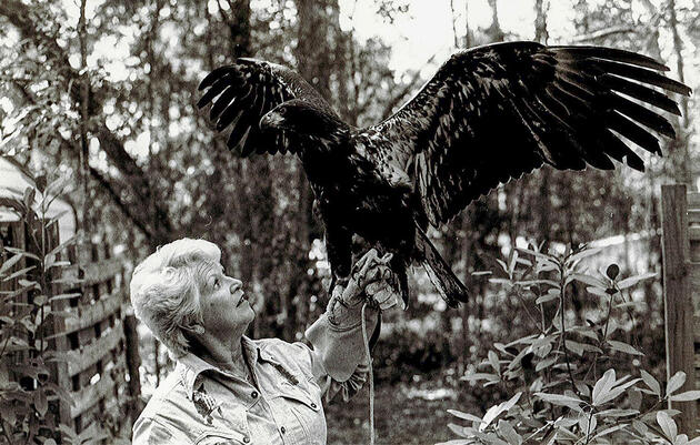 Meet The Woman Who Lived in a Bald Eagle's Nest to Save Raptors