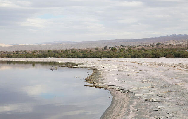 The Fate of the Salton Sea Is in Our Hands