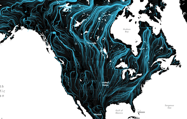 These Amazing Maps Show How Wildlife Will Migrate to Survive Climate Change