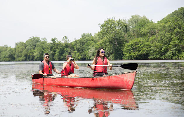 Why You Need to Try Paddle Birding