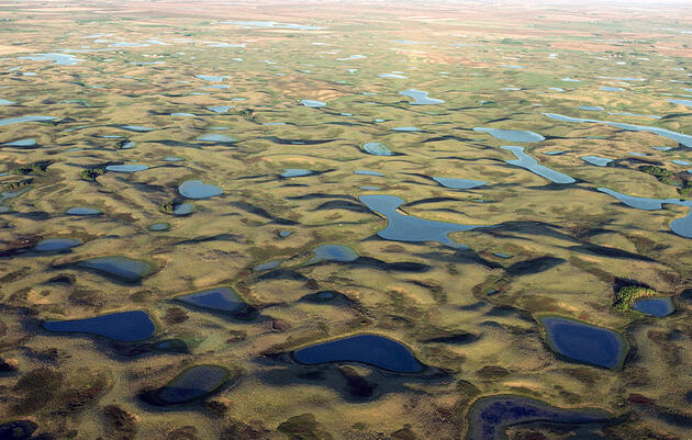 The Waters of the United States (WOTUS) Rule: What It Is and Why It's Important