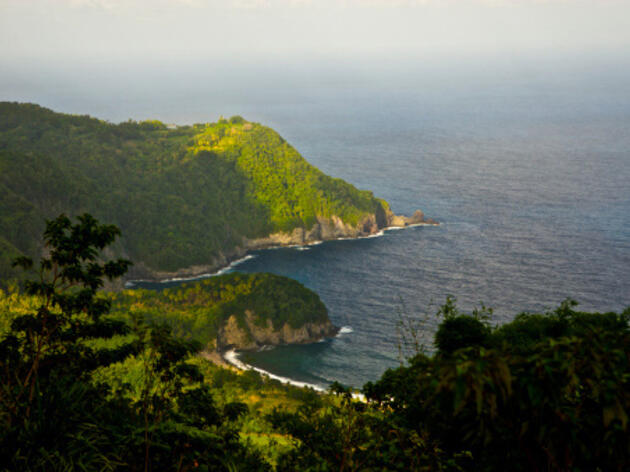 Natural Wonders on the Caribbean's Island of Dominica