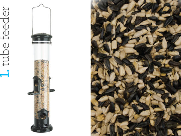 Audubon Guide to Winter Bird-Feeding