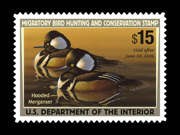 Documentary to Explore Peculiar, Inspiring World of the Federal Duck Stamp Contest