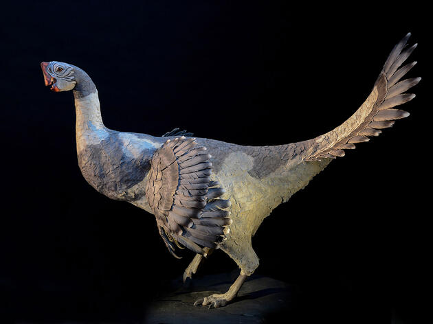 11 Terrifying Dinosaurs That Rocked Feathers Better Than Birds