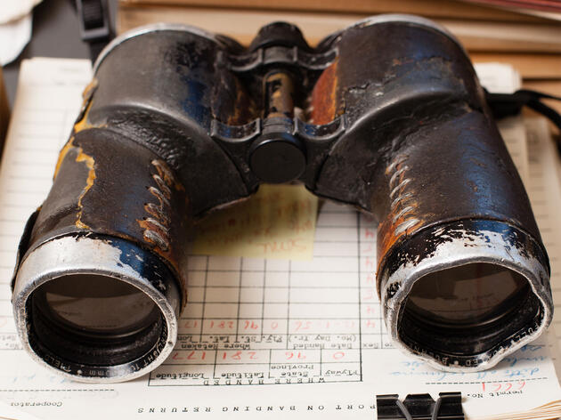 What to Do with Your Old Binoculars