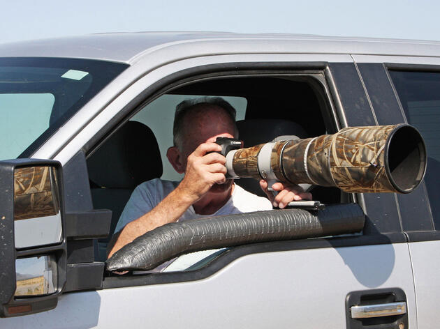 How to Photograph Raptors From a Car