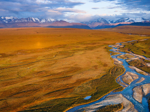 Keep the Arctic National Wildlife Refuge Safe