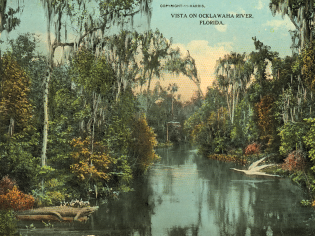 Time Capsule: Canal Threatens Florida's Oklawaha River