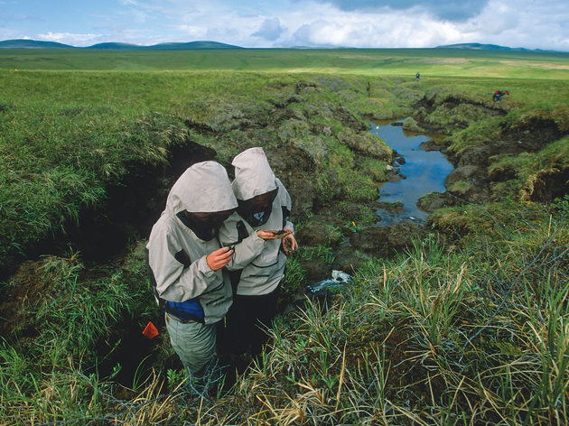 Thawing Permafrost in the Arctic Will Speed Up Global Warming