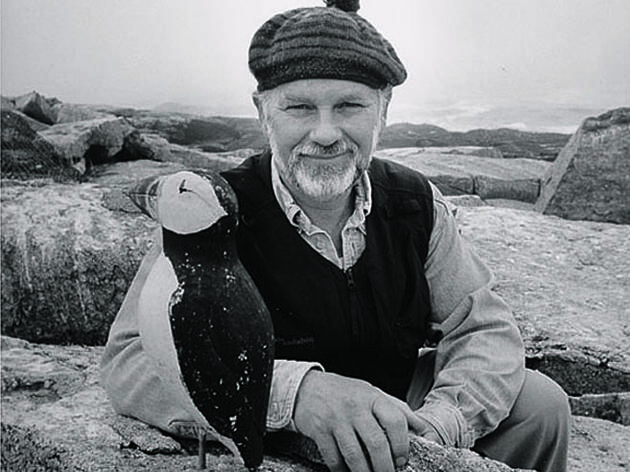 The Puffin Man