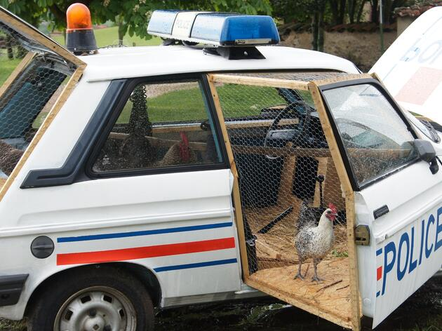 Chicken Coop Cop Car
