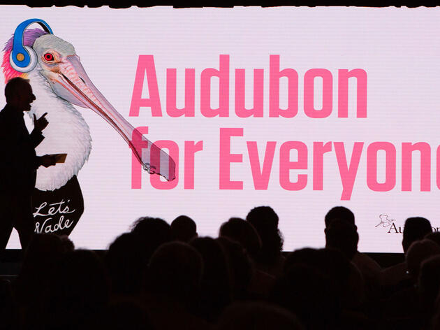 More Than 600 People Flocked to Milwaukee for the 2019 Audubon Convention