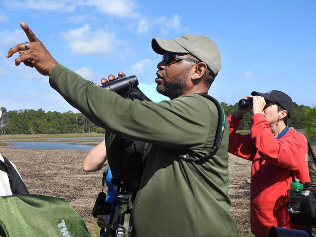 The United State of Birding