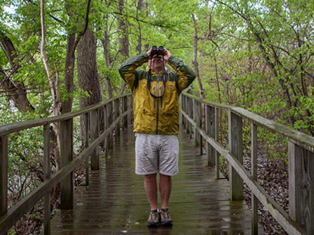 The Audubon Guide To Birding Gear