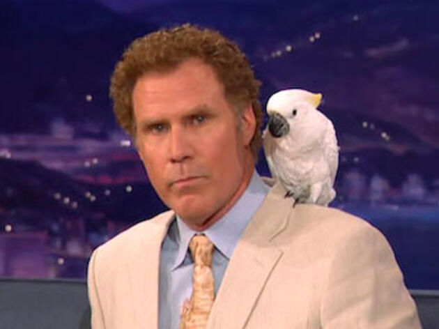 Will Ferrell Has a $7.8 Million (Live) Bird Collection