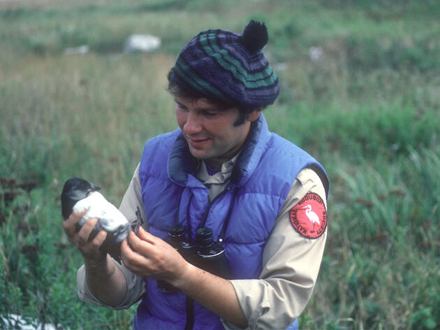 Audubon Honors Conservation Pioneer Dr. Steve Kress for a 45-Year Legacy Saving Seabirds