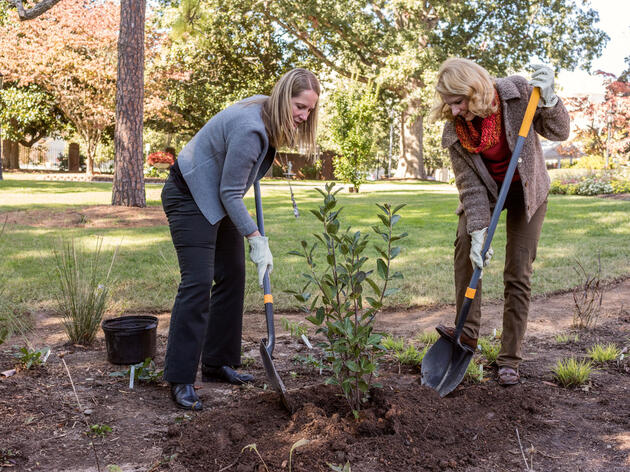 North Carolina's Governor and First Lady Put Native Plants in the Spotlight