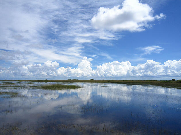 Congress Approves Critical Water Projects: Natural Infrastructure and Everglades