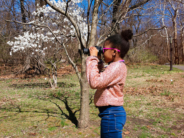 Self-Isolation Is Turning Children Into Budding Birders