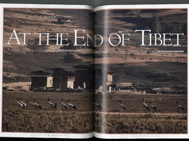 At the End of Tibet