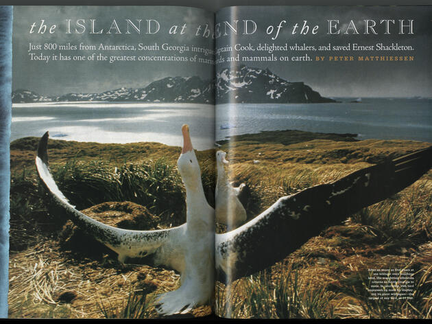 The Island at the End of the Earth