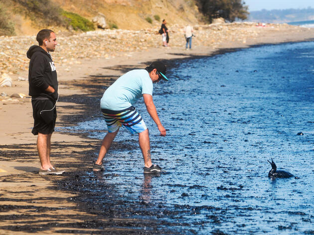 Santa Barbara Oil Spill Hits the Coast
