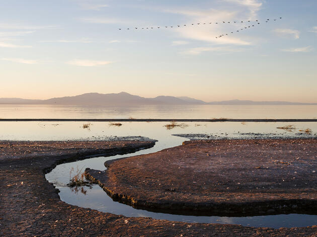 The White House Wants to Help Save the Salton Sea
