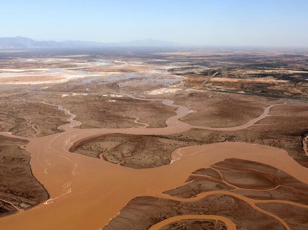 Saving the Colorado River, One Wave at a Time