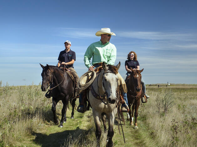 For Consumers and Conservationists: FAQs on Conservation Ranching