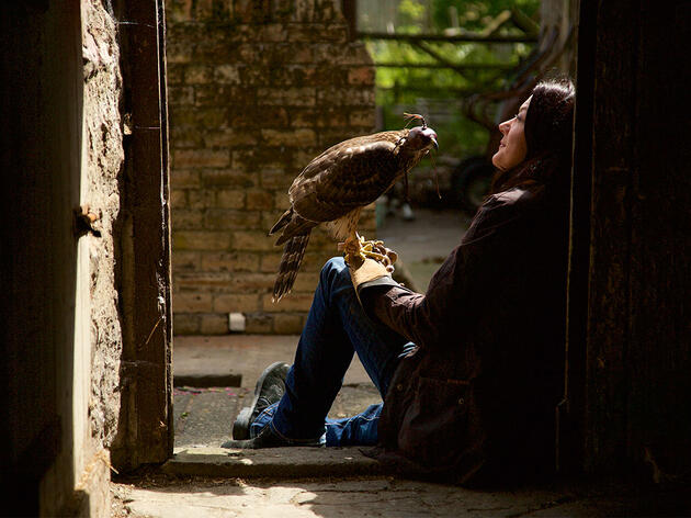 Helen Macdonald on What Falconry Can Teach Us About Our Relationship With Raptors