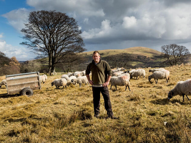 Review: The Shepherd's Life
