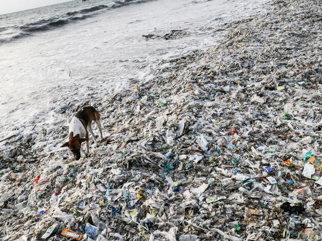 These 5 Countries Are the Biggest Plastic Polluters