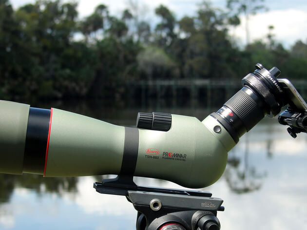 Digiscoping Gear